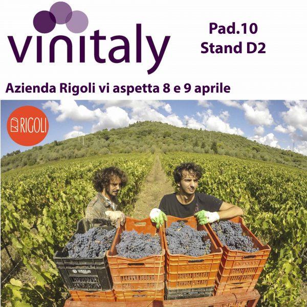 vinitaly HD